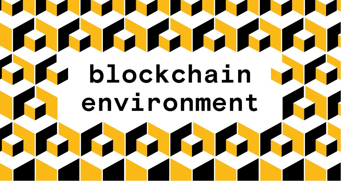 Blockchain Environment