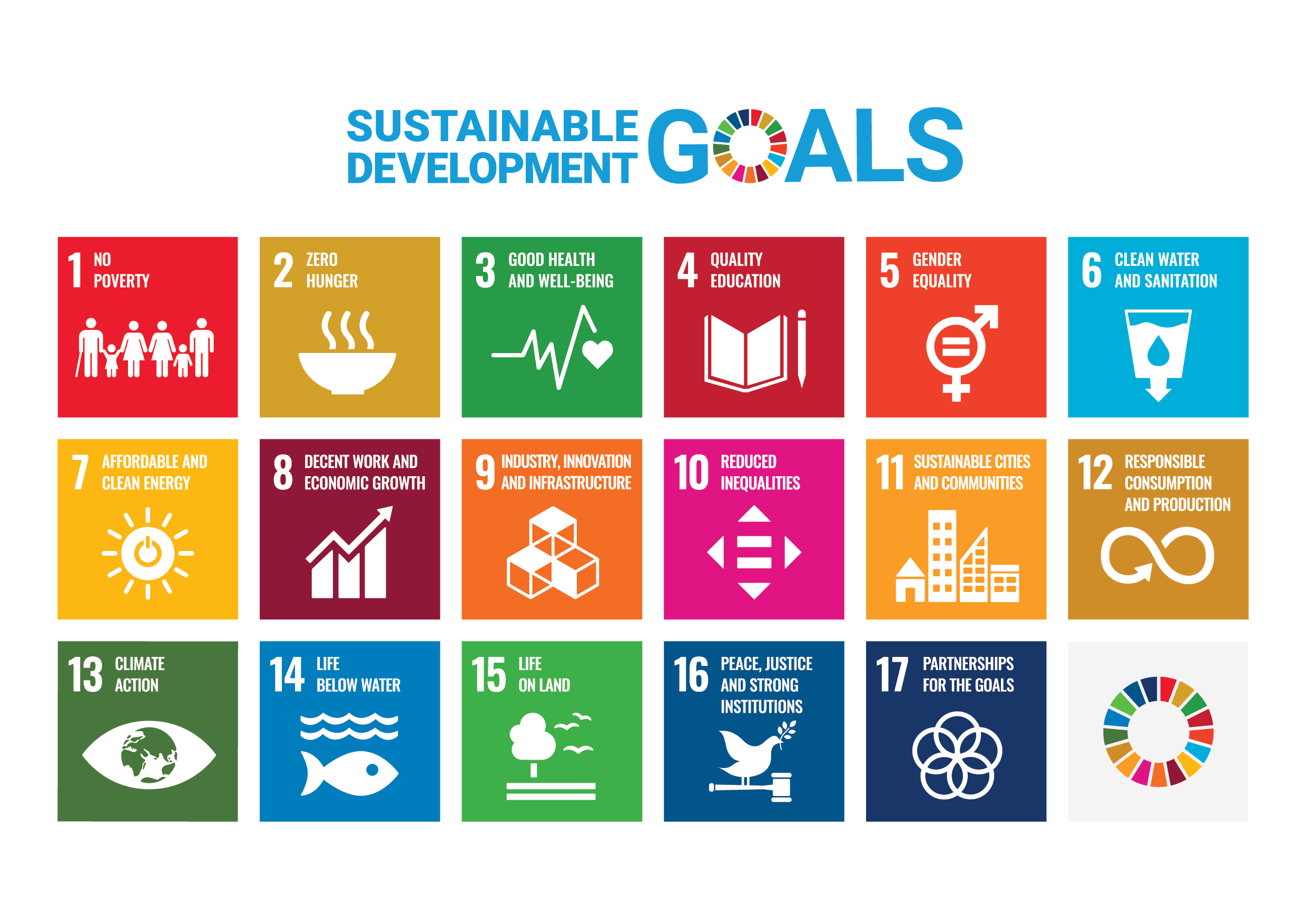 Are the UN's Sustainable Development Goals Possible Without Language Translation?